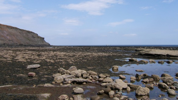 Rocky Shore - tide out - near Port Mulgrave - NYMNPA