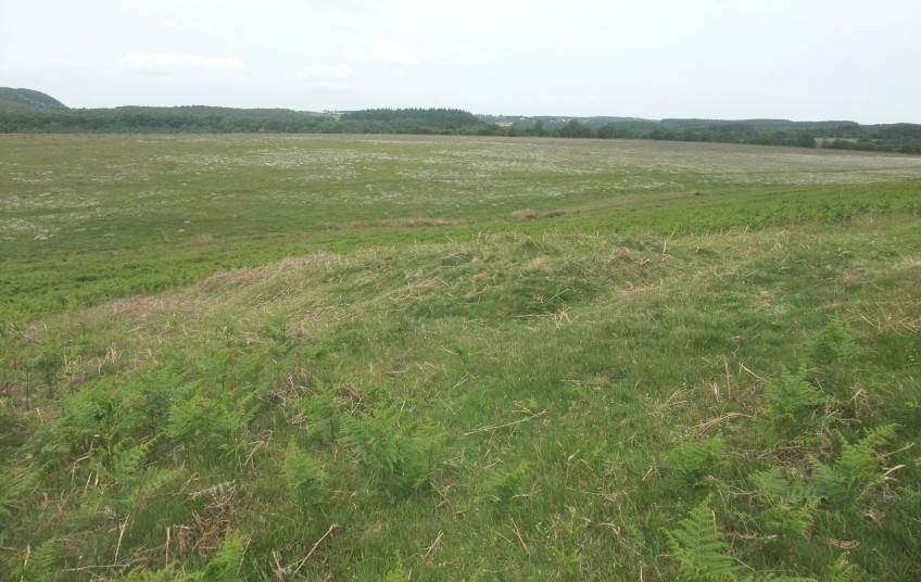 Mediaeval pillow mounds at Levisham – copyright NYMNPA.
