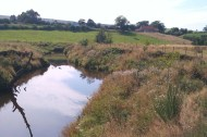 River Esk at Danby - after river restoration work. River bank fencing installed to allow vegetation and trees to establish and stabilise the bank.