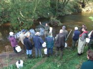 Training volunteers from local Fishing and Wildlife Clubs on how to survey for invertebrates in order to keep an eye on the health of the River.