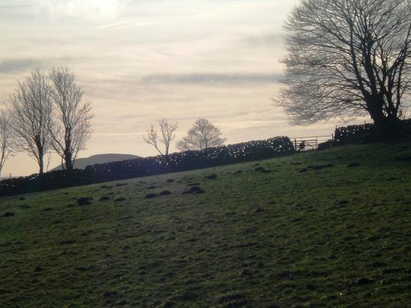 Wall in landscape - Ladhill Gill