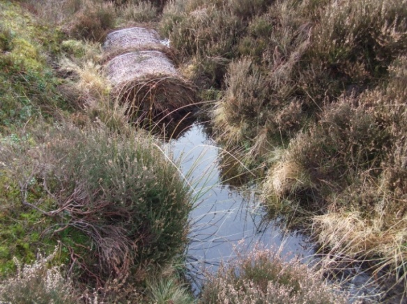 Slowing the Flow - moorland gully blocking photo taken November 2012 - shows heather bales holding water back
