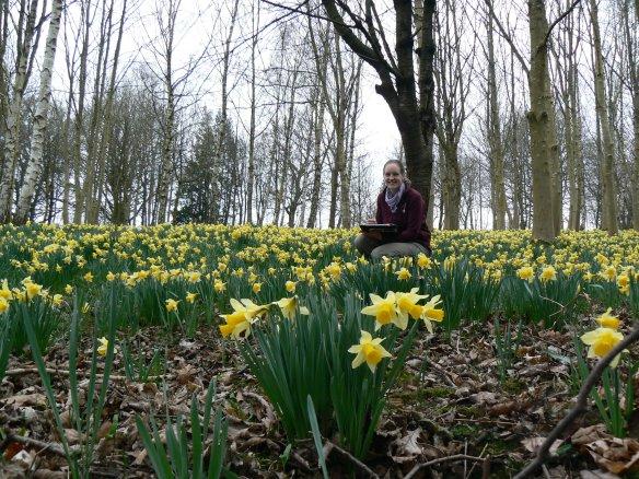 Alex surveying wild daffodils
