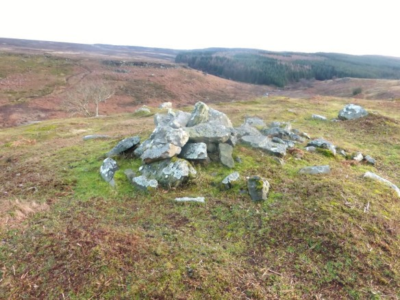 Volunteers visited this remote burial cairn after several years of bracken treatment to look for any regrowth