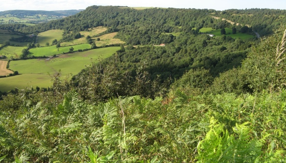 Sutton Bank area