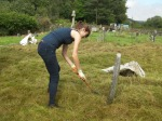 Hand cutting - Rosedale Churchyard conservation area