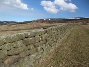 Drystone wall - Bragg Farm, Farndale