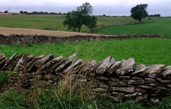 Drystone walls in the NYM landscape - Kirsty Brown