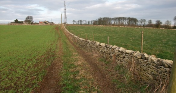 Rebuilt drystone wall - Kirsty Brown