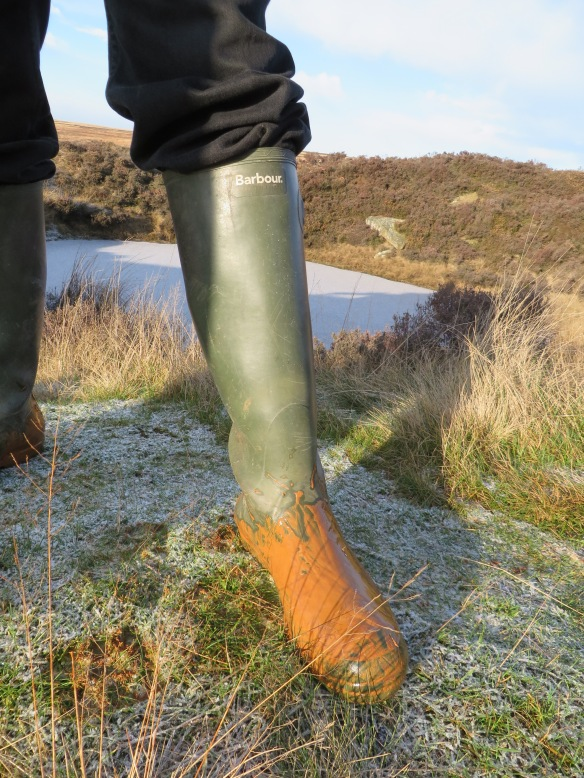 Silhowe January 2015 - someone's wellie covered in iron ochre - by Emily Collins