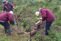 River Esk Volunteers - leaky dam installation