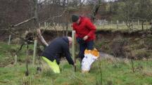 Environment Agency volunteers - tree planting