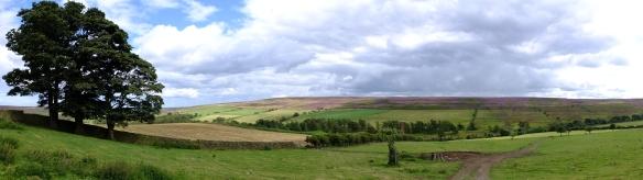 Kildale Landscape - NYMNPA