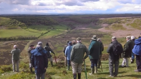 Looking down into Hole of Horcum - RFS visit 19 05 2015 - NYMNPA