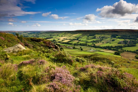 Danby Dale in the North York Moors - by Mike Kipling