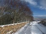 Snow - TBS - NYMNPA