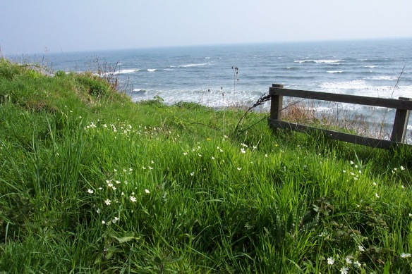 North York Moors coastal landscape - looking out to sea - NYMNPA
