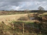 WREN FWPM Project - river bank fencing - NYMNPA