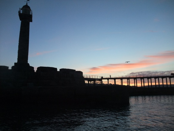 Coming back into Whitby - Ecologists Workshop Sept 2015 - copyright Sam Witham, NYMNPA