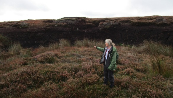 Glaisdale Moor peatland restoration - Ecologists Workshop 2015 - copyright Kate Bailey, NYMNPA