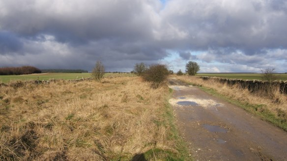 Section of the Hambleton Drove Road now surfaced - copyright NYMNPA