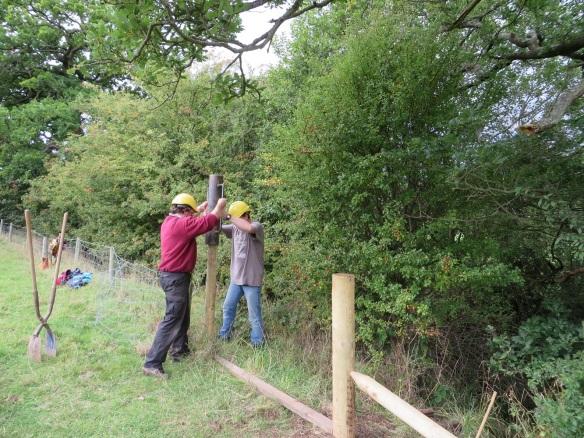National Park Volunteers installing riparian fencing - copyright NYMNPA