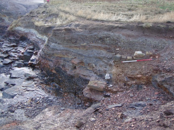 Alum quarry deposits eroding from cliff edge at Saltwick Nab - copyright ARS Ltd.