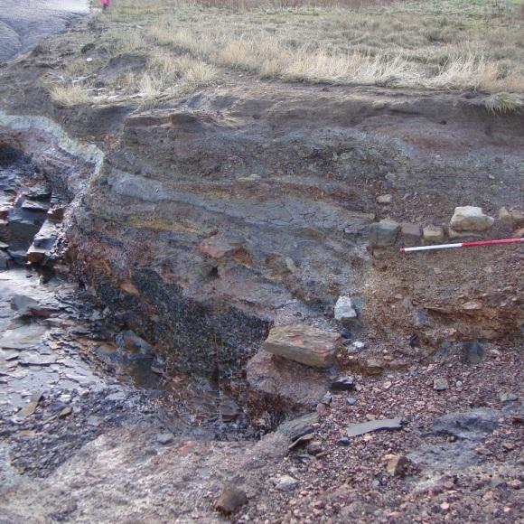Alum quarry deposits eroding from cliff edge at Saltwick Nab - copyright ARS Ltd.