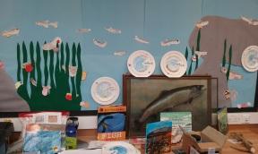 Salmon in the Classroom - display. Copyright NYMNPA.