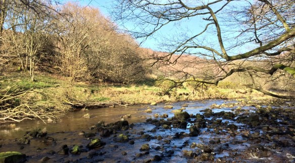 Near Beck Hole - copright Tom Stephenson