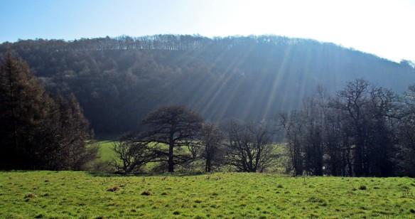 Spring sunshine near Byland Abbey - copyright Roy McGhie, NYMNPA