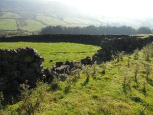 Collapsed drystone walling - copyright NYMNPA