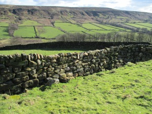 TBS restored drystone walling - copyright NYMNPA