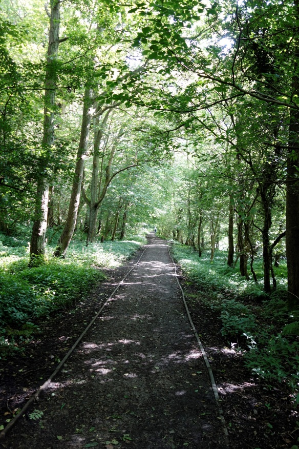 Part of the Beck Hole Incline today – now the Historic Rail Trail. Copyright NYMNPA.