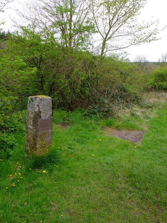 The site of the former railway station at Beck Hole at the base of the Incline – shown by the stone edge. Copyright NYMNPA.