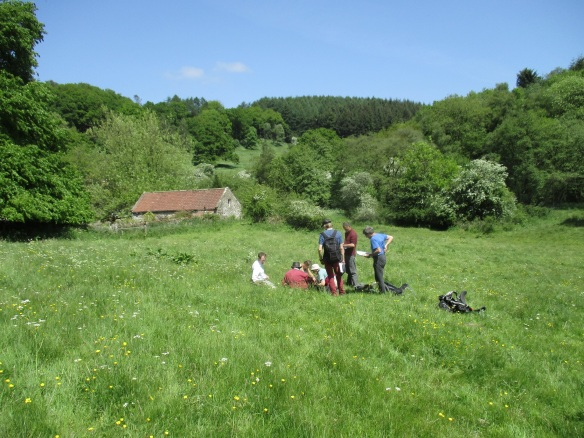 Back in June the LLG Volunteers attended an informal workshop to work through the survey methodology and brush up on field identification skills before embarking on their own surveys for 2016. Copyright - NYMNPA.