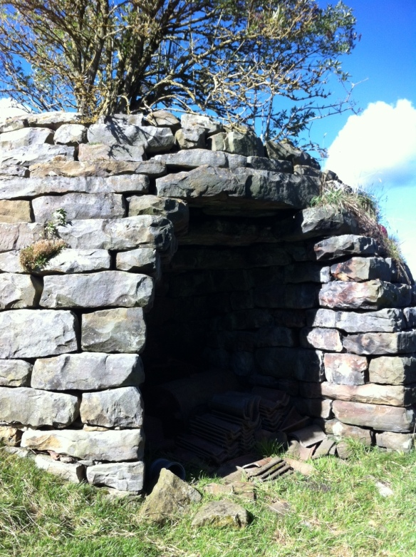 Lime kiln in Harwood Dale - copyright NYMNPA.