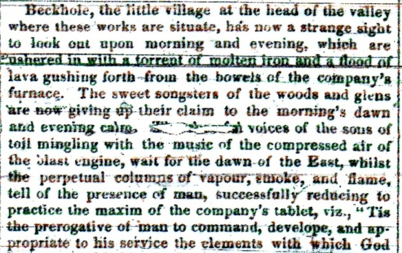 Extract from the Whitby Gazette 16 June 1860 - thanks to Tammy Naylor.