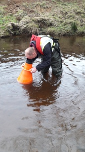 Dr Hill, Natural England's Chief Scientist looking for Freshwater Pearl Mussels - Natural England visit to River Esk 15 December 2016 - copyright NYMNPA.