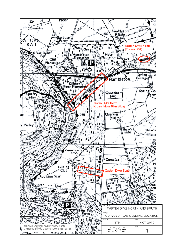 Casten Dyke North and South - survey areas. Copyright Ed Dennison Archaeological Services Ltd.