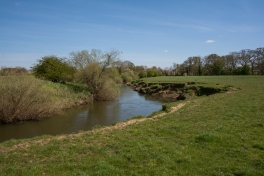 Lower reaches of River Rye just west of Butterwick Bridge. Copyright Liz Bassindale, Howardian Hills AONB.