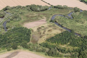 Meanders in Rye near Sproxton - can see the water crowfoot beds within the river, September 2016. Copyright North East Yorkshire Ecological Data Centre.