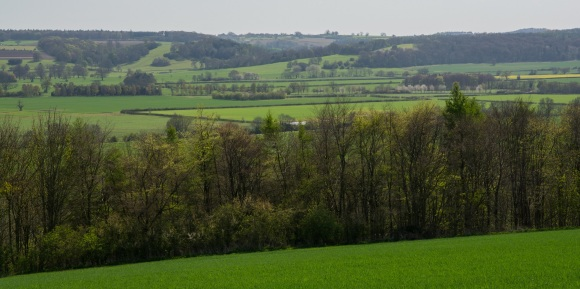 South west from Caulkleys viewpoint looking over Howardian Hills AONB. Copyright Liz Bassindale, Howardian Hills AONB.