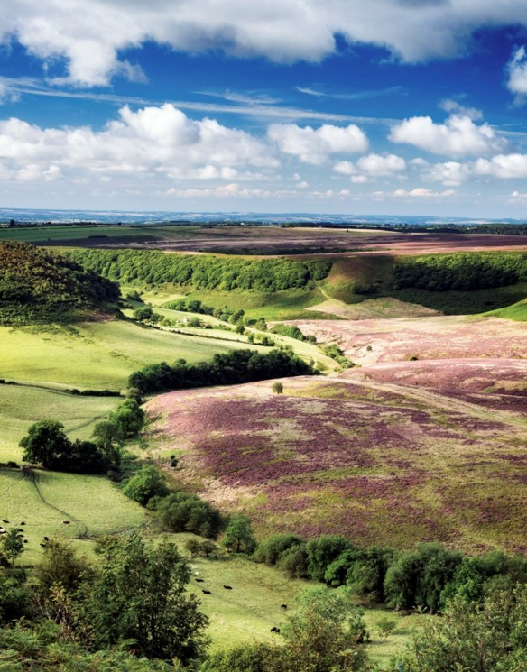 Hole of Horcum following bracken control in 2015. Copyright/photo credit rjbphotographic.co.uk