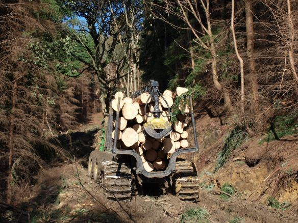 Forestry management in the North York Moors. Copyright NYMNPA.