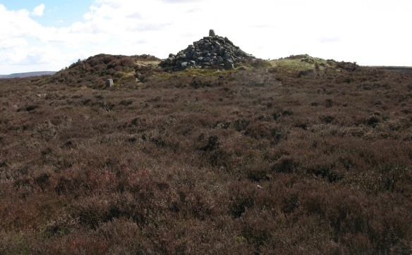 Large walkers' cairn on Drake Howe which draws visitors off the Cleveland Way. Copyright M Johnson.