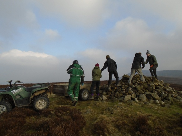 NPA apprentices help to remove the modern cairn from a burial monument on Live Moor. Copyright M Johnson.