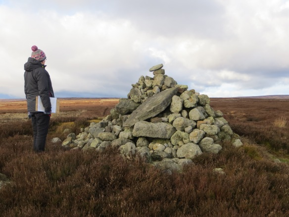 A volunteer monitors the walkers' cairn on Pike Howe. Copyright S Bassett.