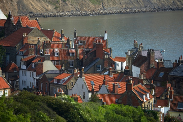 Roof tops at Robin Hood's Bay. COPYRIGHT MIKE KIPLING.