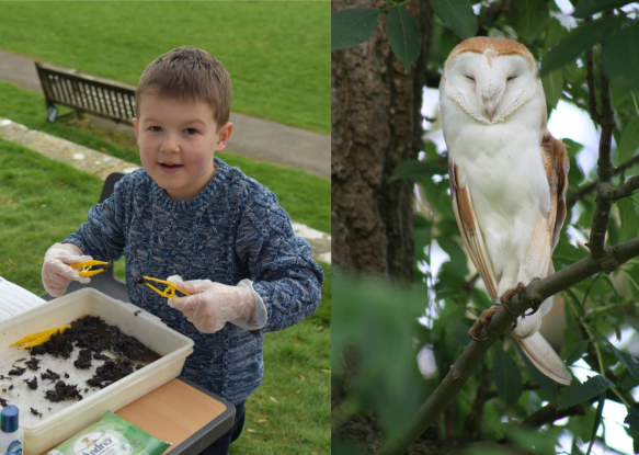 Getting hands on at the Land of Iron launch event (copyright NYMNPA) and photo of Barn Owl (copyright Brian Nellist).